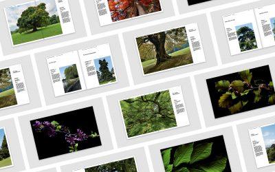 Publication du livre « Des arbres remarquables »