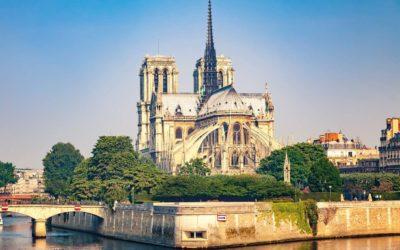 La divine proportion et le bois pour ressusciter Notre-Dame