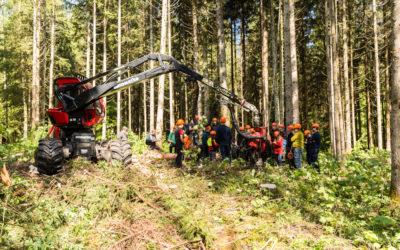 Un nouvel axe d'études allie numérisation et économie forestière