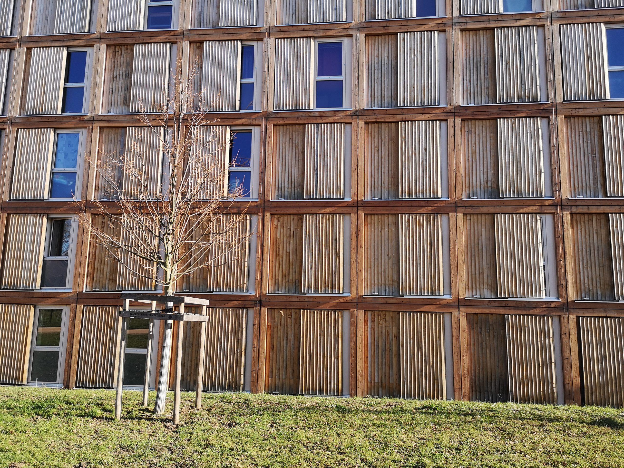Le centre d'hébergement collectif de Rigot à Genève (1er Prix)